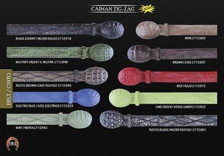 caiman ~ alligator Zig-Zag