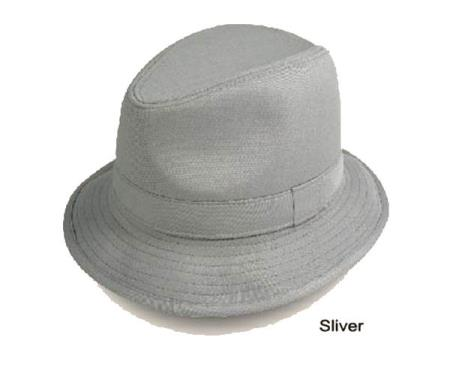 Buy TQ-4589 New Men's Fedora Trilby Hat Silver