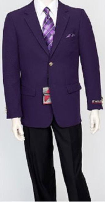 Pacelli Mens Classic Dark Purple Blazer Jacket Blair