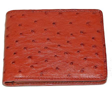 Buy AVV2 Wallet ~ billetera ~ CARTERAS Ostrich Wallet Rust