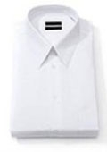 Solid White Point Collar
