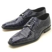 caiman ~ alligator Oxford