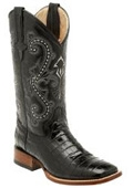Belly Alligator Black -