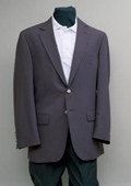 2 Button Blazer Grape
