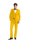 Mens 2 Button Suits
