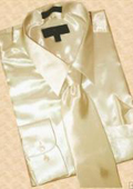 Satin Tan ~ Beige Dress Shirt Tie Hanky Set