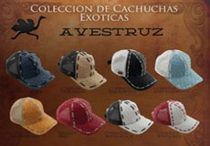 Mens Hats Genuine Ostrich Mesh Trucker Baseball Caps DiffColors
