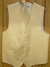 GROOMSMEN DRESS TUXEDO WEDDING VEST & TIE SET