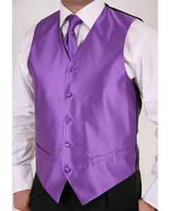 Purple 2-piece Dress Tuxedo Wedding Vest Set