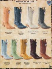 Ostrich Diff Colors/Sizes Cowboy