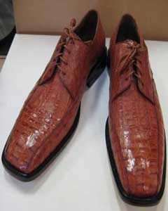 Genuine Authentic Congnac caiman